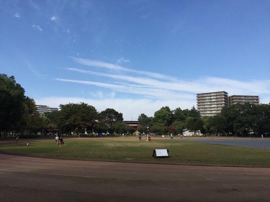 Higashiyamato-Minami park Tokyo Higashiyamato sports season activity TAMA Tourism Promotion - Visit Tama 都立東大和南公園 東京都東大和市 スポーツ 秋 アクティビティ 多摩観光振興会