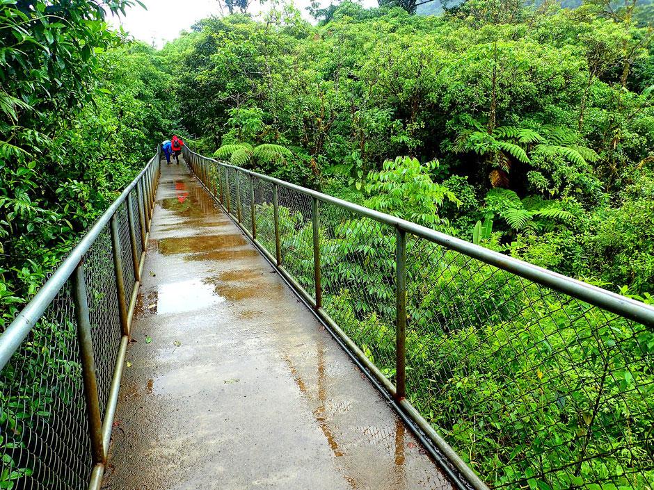 Le Rio Celeste sous la pluie, COSTA RICA. missaventure blog