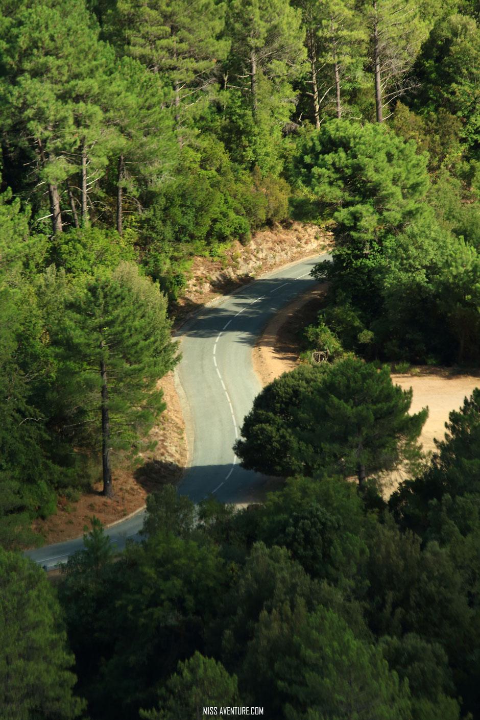 Nous apercevons les fameuses aiguilles de Bavella, grandes montagnes aux pointes escarpées, c'est un paysage à couper le souffle!!.