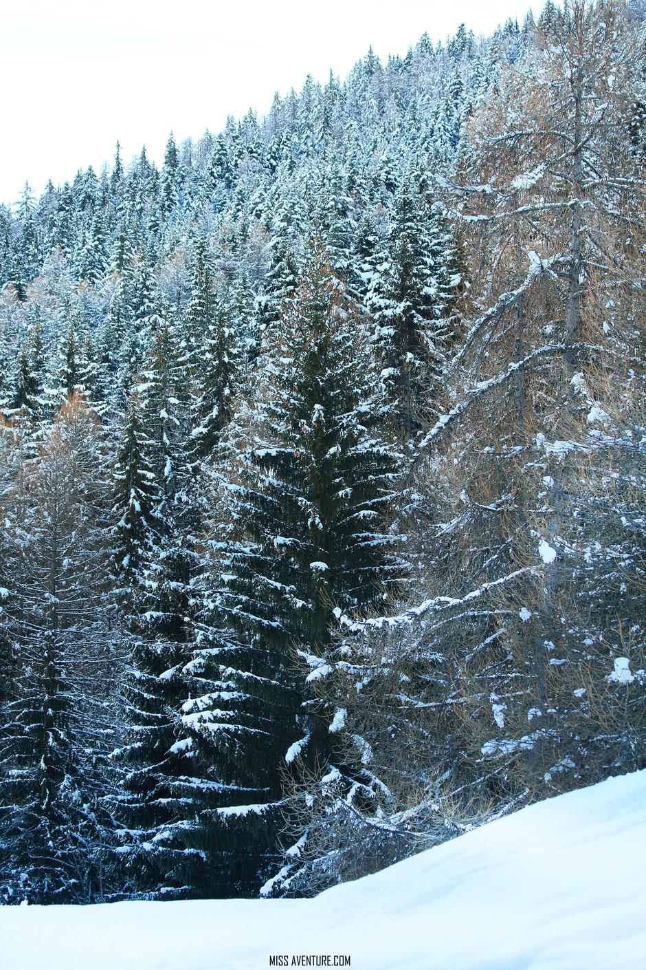 Pra Loup, week end sport et nature, balade en raquette. www.missaventure.com blog voyage d'aventures nature et photos.