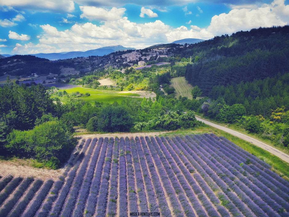 sur la route de la lavande. PROVENCE, Aurel (France) www.missaventure.com blog voyage d'aventures, nature et photos
