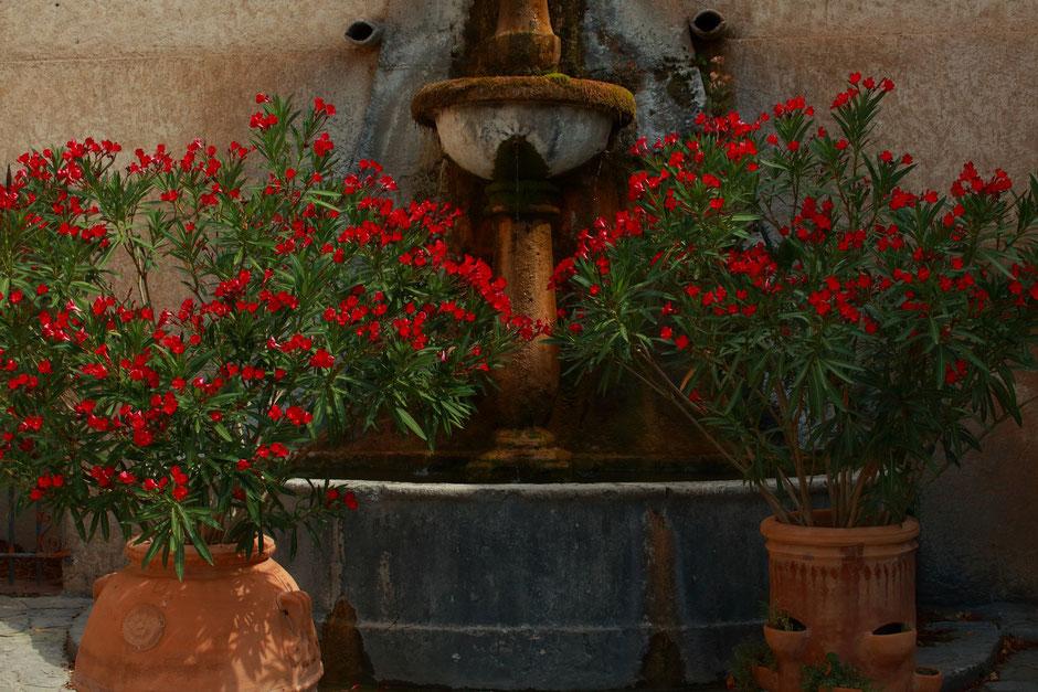 Fontaine de Moustiers Sainte Marie, Week end nature et sport dans le VERDON (FRANCE) www.missaventure.com blog d'aventures nature et photos