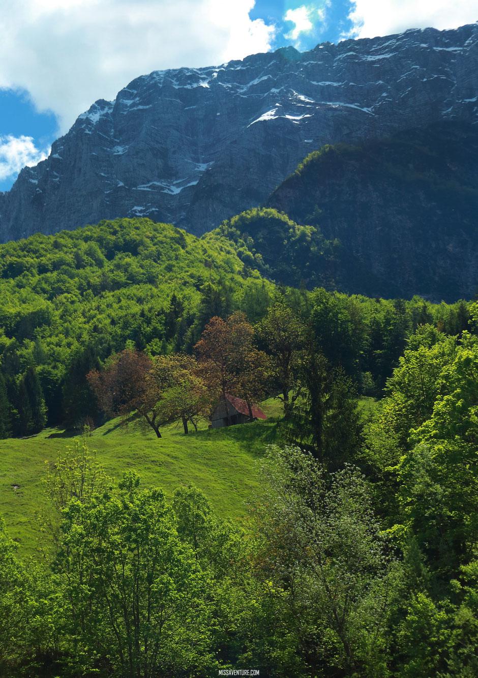 Les gorges de la Fratarica, ROAD TRIP SLOVÉNIE. www.missaventure.com blog voyage d'aventures, nature et photos