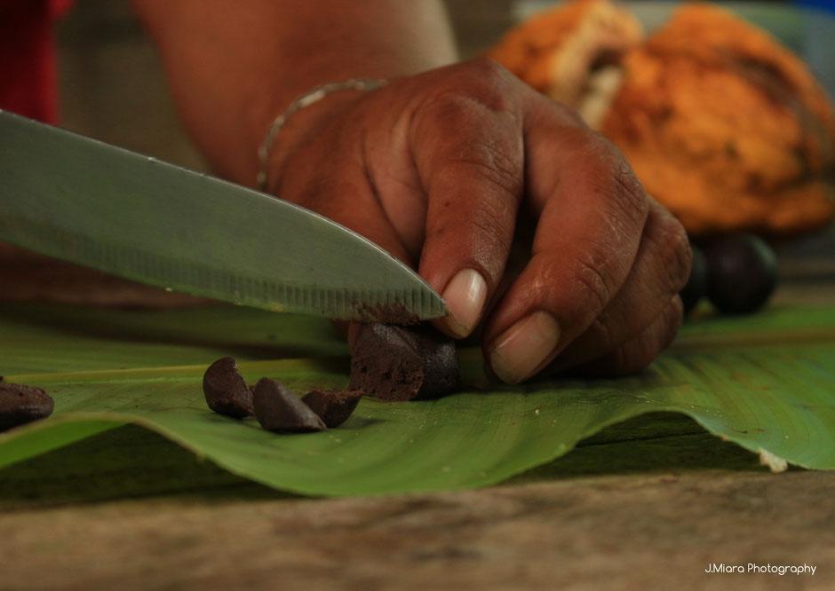decouverte du chocolat de la tribu Bribri. COSTA RICA. missaventure blog