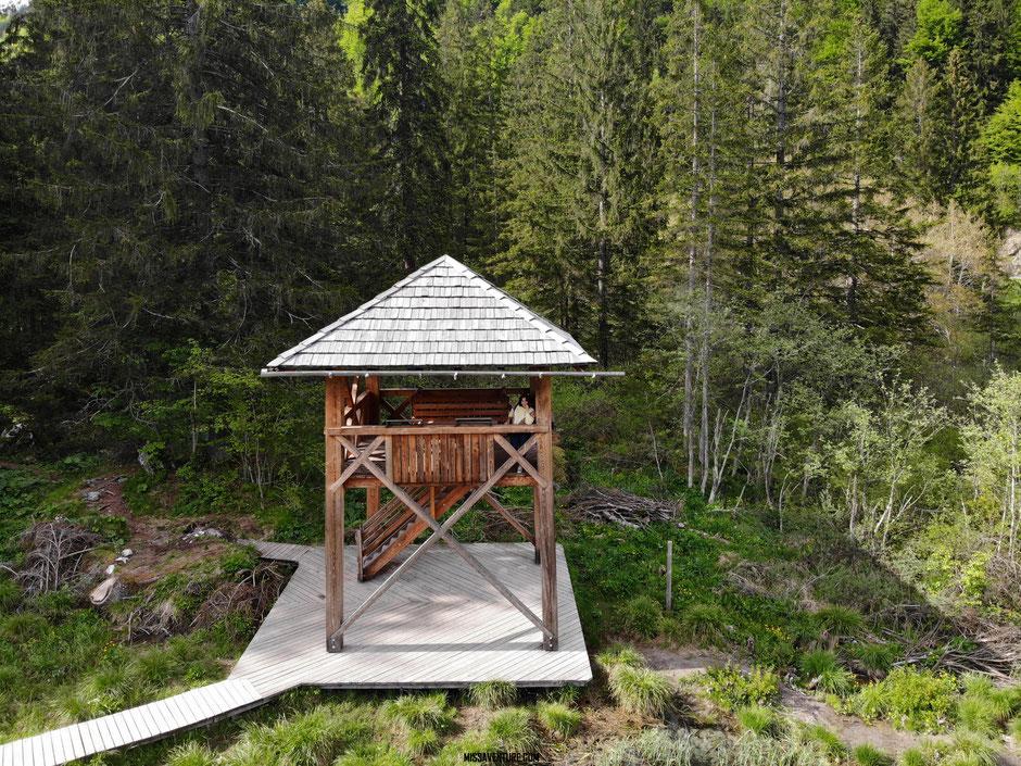La réserve Zelenci,  ROAD TRIP EN SLOVÉNIE. www.missaventure.com blog voyage d'aventures nature et photos.