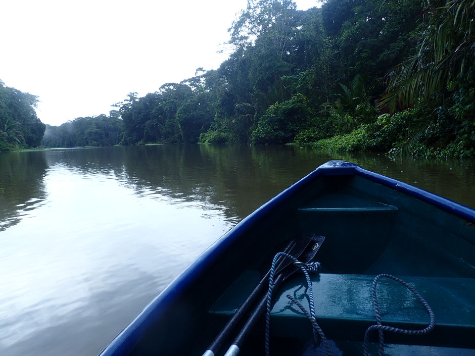 Balade en canoe, TORTUGUERO. COSTA RICA. missaventure blog