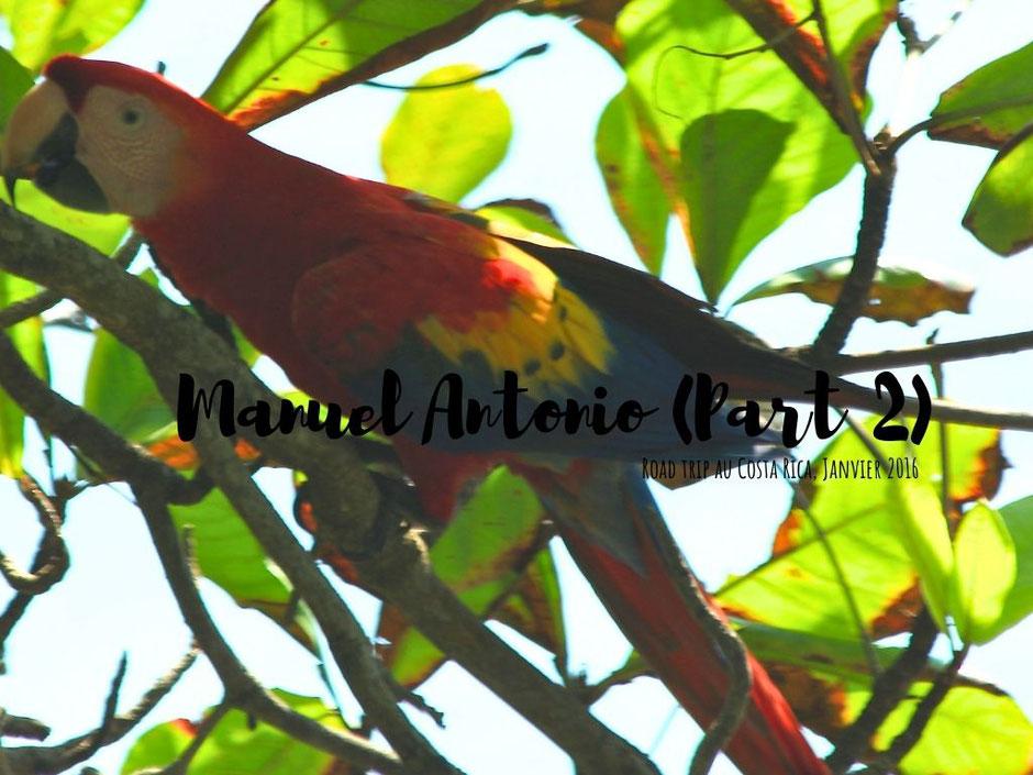 Sufing time Manuel Antonio. Costa Rica. missaventure blog