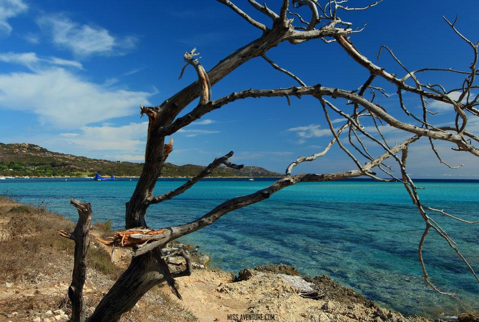 TOP 10 plus belles plages corses. PIANTARELLA. www.missaventure.com. blog voyage d'aventures nature et photos. Road Trip Corse du Nord au Sud.