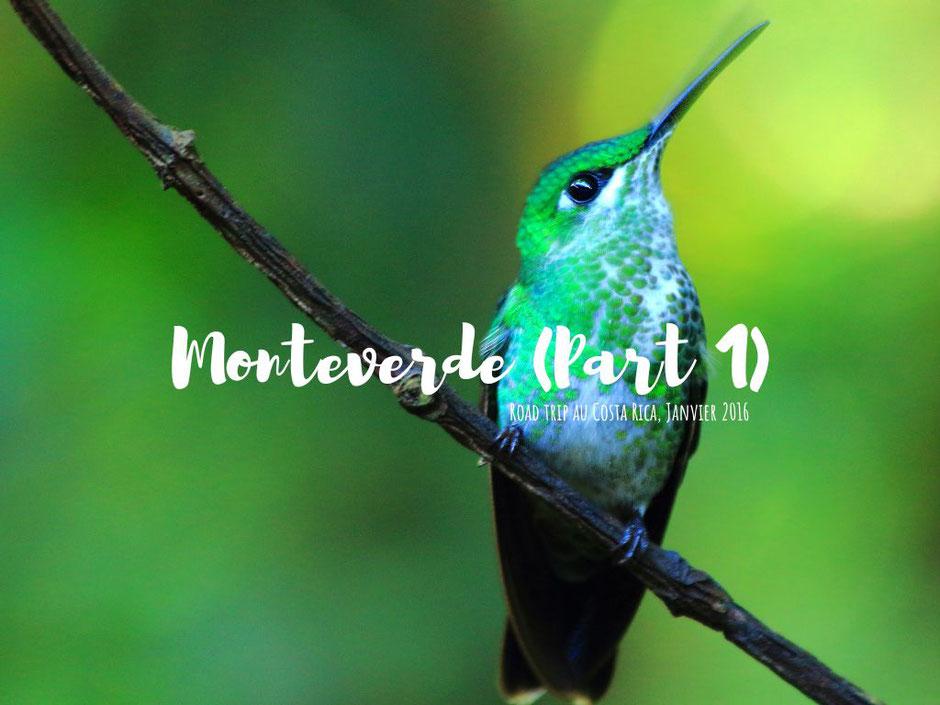 Monteverde coté nature.COSTA RICA. missaventure blog