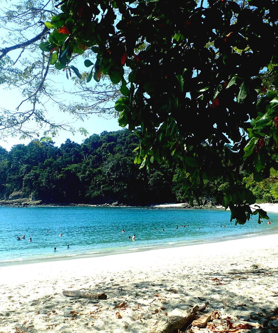 Plage Parc national de Manuel Antonio. Road trip au Costa Rica. www.missaventure.com blog voyage d'aventures, nature et photos