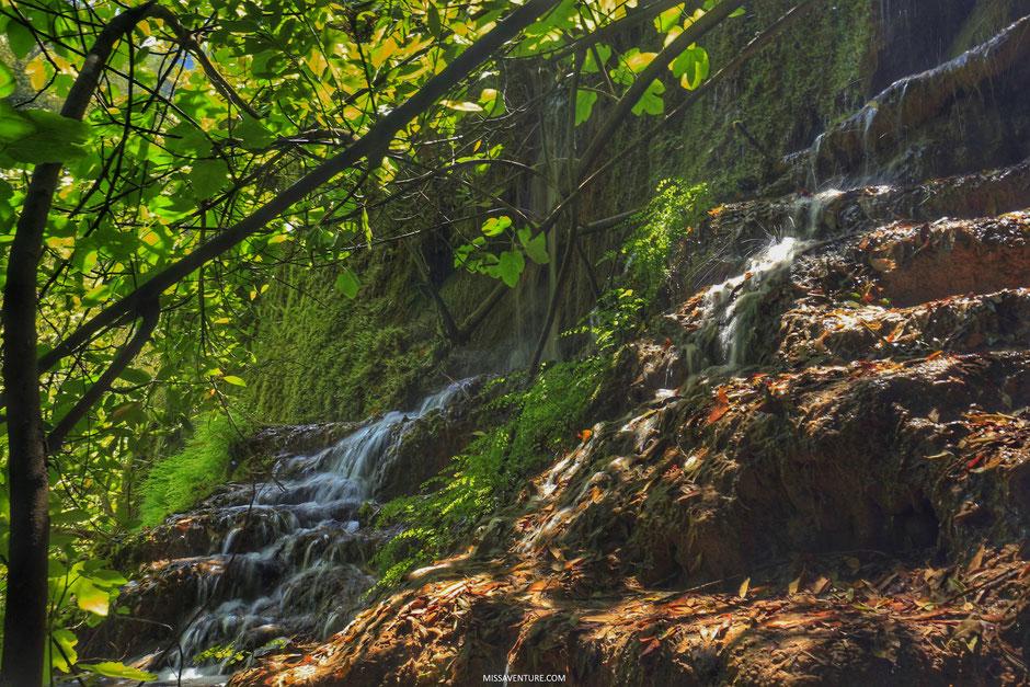 Sentier des gorges de la Siagne, ESTEREL (FRANCE). www.missaventure.com blog d'aventures, nature et reflexions green.