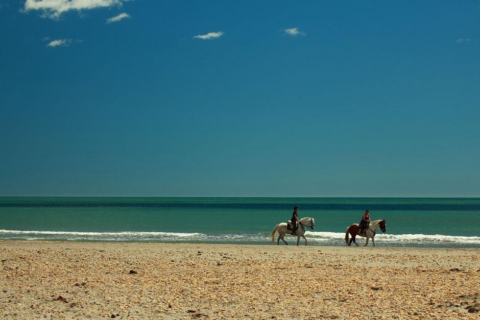 CAMARGUE, www.missaventure.com. blog aventures, nature et photo, plage sauvage de saintes Maries de la mer