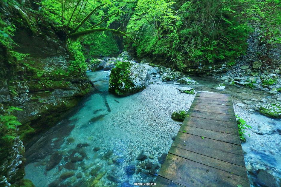 choisir ses objectifs photo. www.missaventure.com blog voyage d'aventures nature et photos