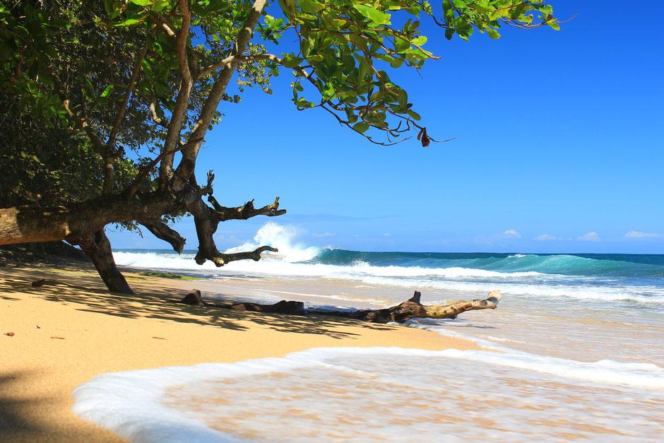 Manzanillo.COSTA RICA. missaventure blog