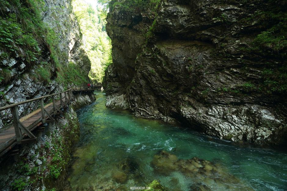Visite des gorges de Vintgar, SLOVENIE. road trip en Slovenie;  www.missaventure.com blog voyage d'aventures, nature et photos
