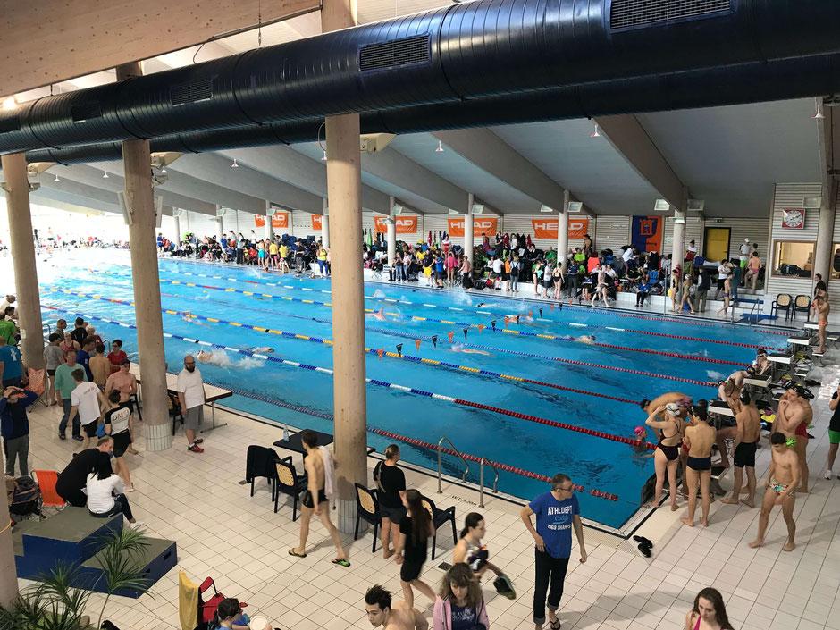 Die Wettkampfstätte ist das Aquarena Hallenbad in Dillenburg / Foto: Ralf Hermann