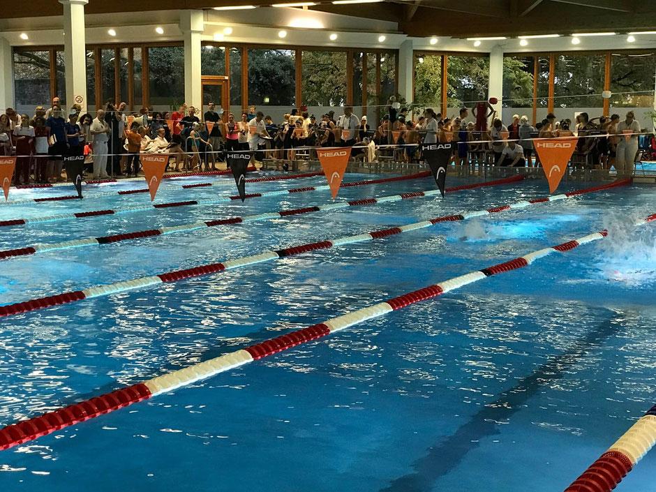Bild: Swimsportnews-Hessen