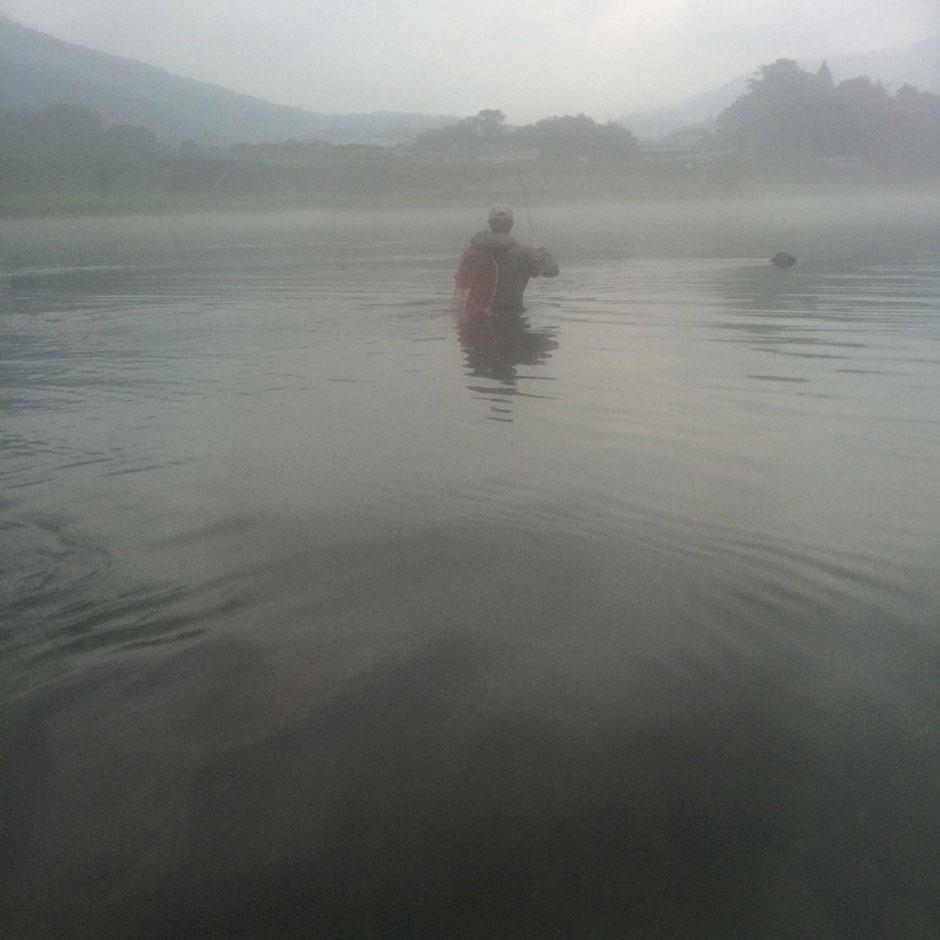 霧の中の緩い流を狙う。