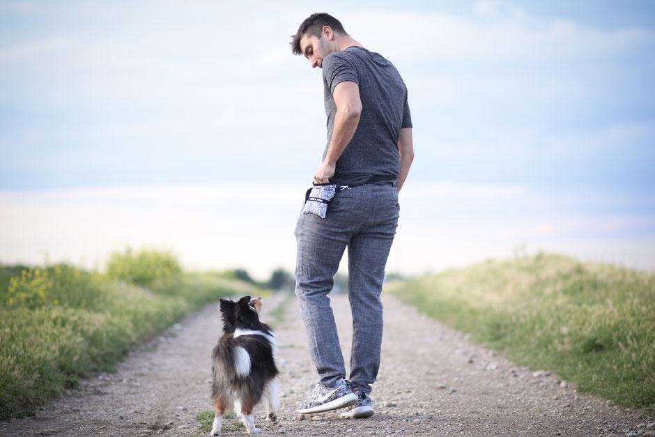 Gassibeutel, Gassitasche, Leckerlibeutel. Hund, Wunschdesign, personalisiert, handmade