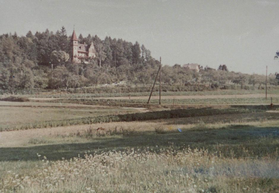 1950 Blick von Raigeringerstr.