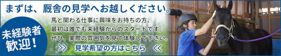 まずは、金沢競馬の厩舎への見学へお越しください。馬と関わる仕事に興味をお持ちの方