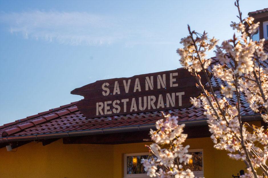 serengeti park abendessen buffet savanne restaurant