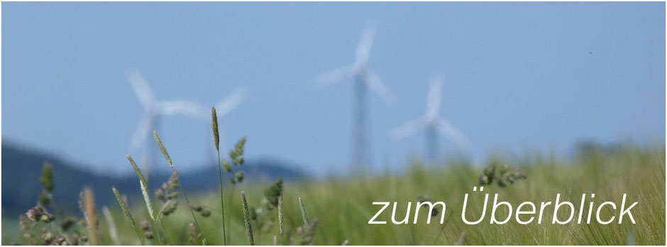 Windturbinen in der Natur