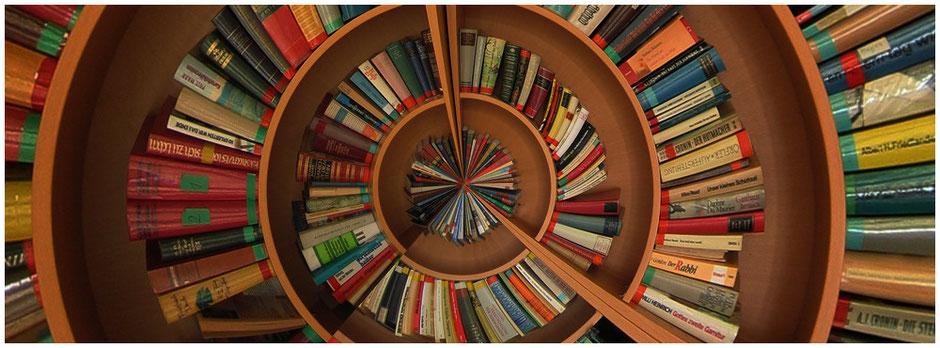 Masse an Büchern keine Übersicht Spirale der Verzweiflung domiswindrad