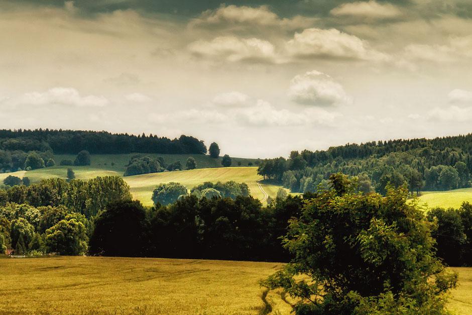 landschaft-mit-baeumen-und-huegeln-masuren