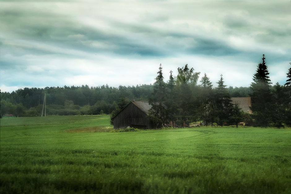 holz-huette-gruene-landschaft
