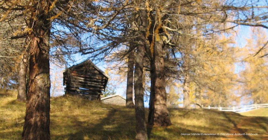 Wandern zu den Eulenwiesen & Gleinser Mähder - Hiking to Maria Waldrast-Wipptal