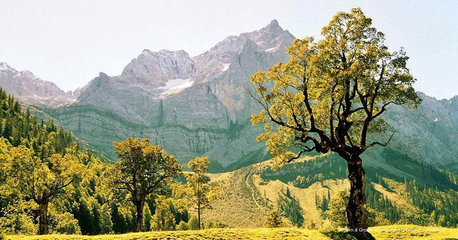 Großer Ahornboden, Karwendel, Naturpark, Innsbruck, Tirol, Ahornbäume, Fotospots, Tipps, Juwele