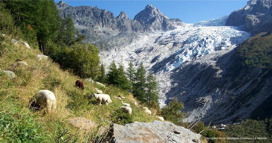 Westschweizer Gletscher, Gletscher Westschweiz, Schweizer Mont Blanc Gletscher, Swiss Mont Blanc Glacier, Nicest Glacier Switzerland, schönste Gletscher der Schweiz