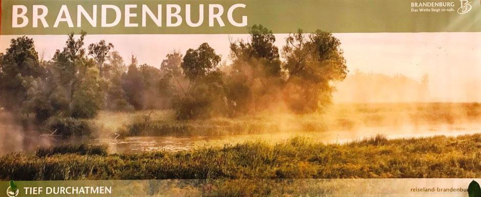 Plakat der TMB mit dem Motto: Brandenburg. Das Weite liegt so nah. Tief durchatmen. Zu sehen ist eine brandenburgische Landschaft im Frühnebel.