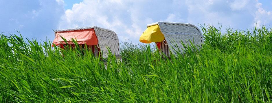 Strandkörbe hinter grünem Strandhafer vor blauem Himmel im Deutschlandtourismus