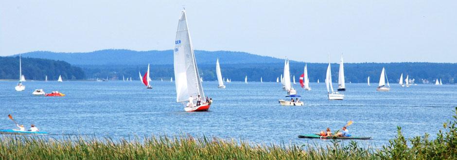Segelboote auf dem Scharmützelsee