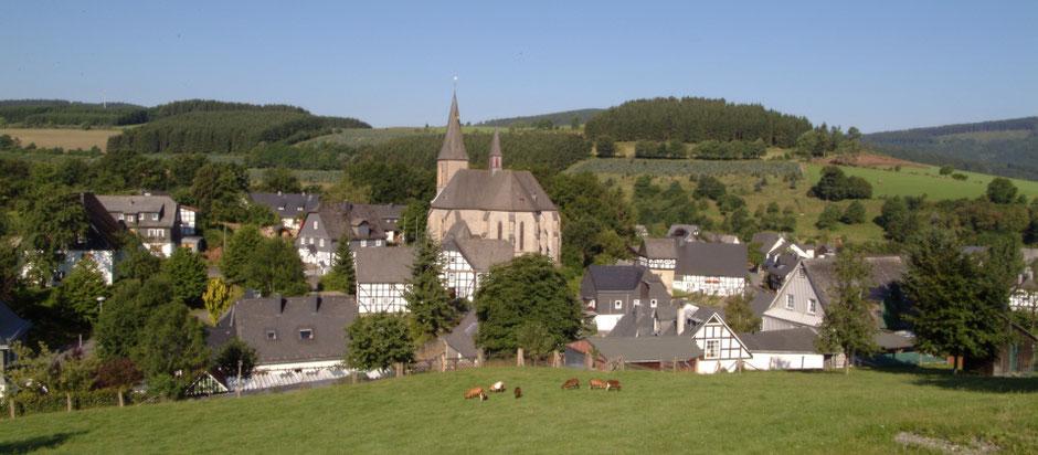 Blick vom Kampe auf die Pfarrkirche und die historische Mitte Assinghausens