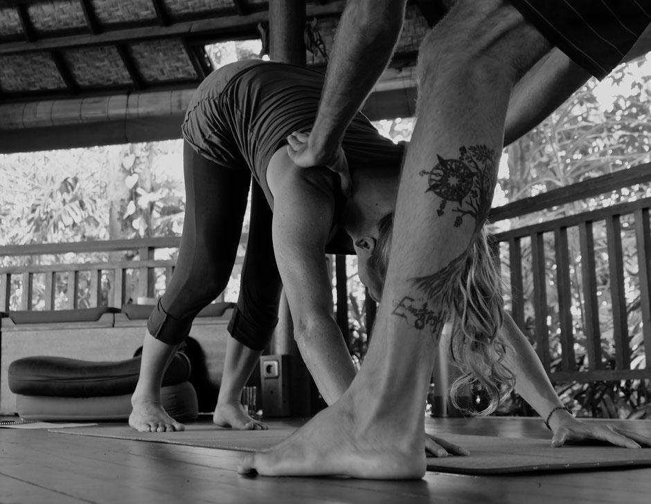 Yoga, herunterschauender Hund, Adjustment, Einzellektion, Ausrichtung, Wohlfühlzeit Studio, Yoga Studio, Nottwil, Sempachersee, Cantienica Methode, Yoga Privatlektionen, Thai Yoga Massage, Therapieraum