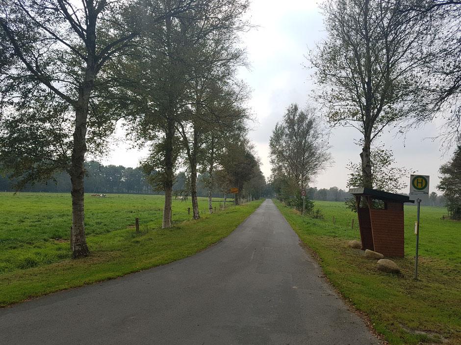 Plattdüütsch: Weg von de Peter-Springer-Straat na'n Ehlanddamm in Ihlbeek