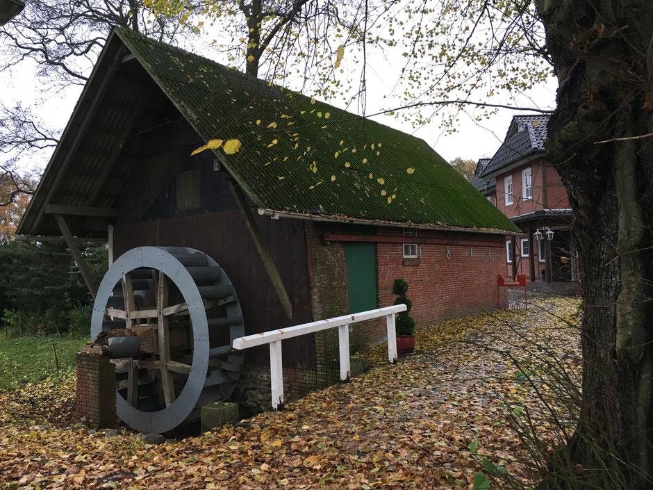 Hollener Möhl (von Westen), Hollen, Landkreis Cuxhoben