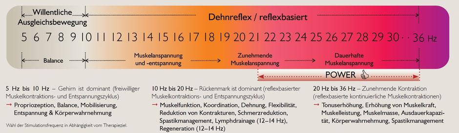 Galileo Frequenzen Therapie
