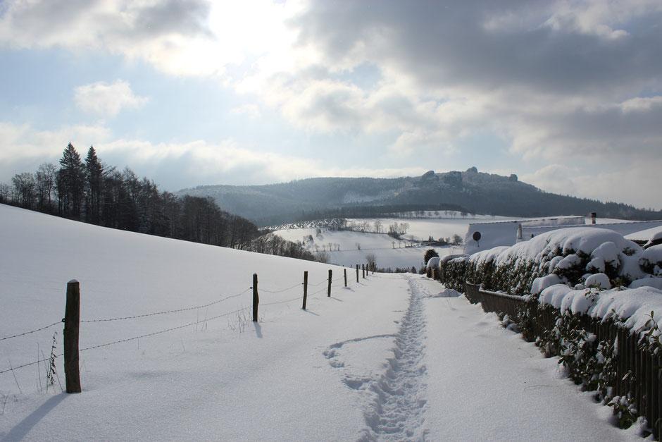 Hier fangen tausend und ein Spaziergang an: der Feldweg direkt neben den Häusern am Wald