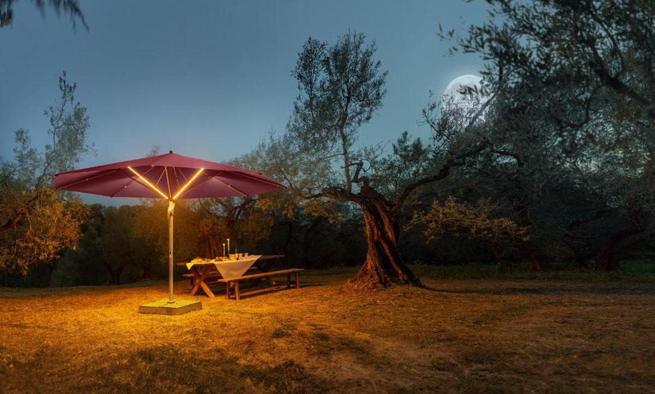 Igelfreundlicher Garten in der Nacht
