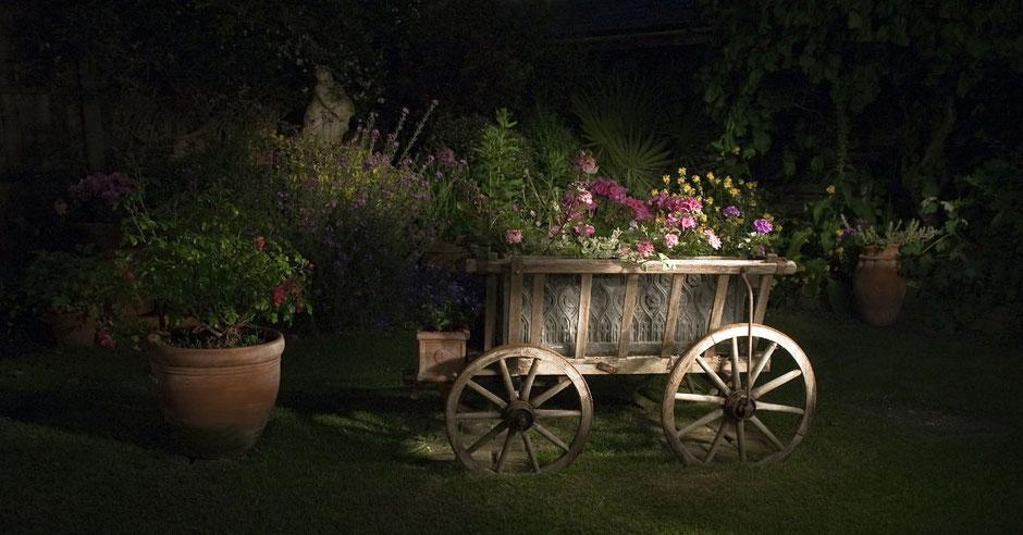 Beleuchteter Leiterwagen im Garten bei Nacht