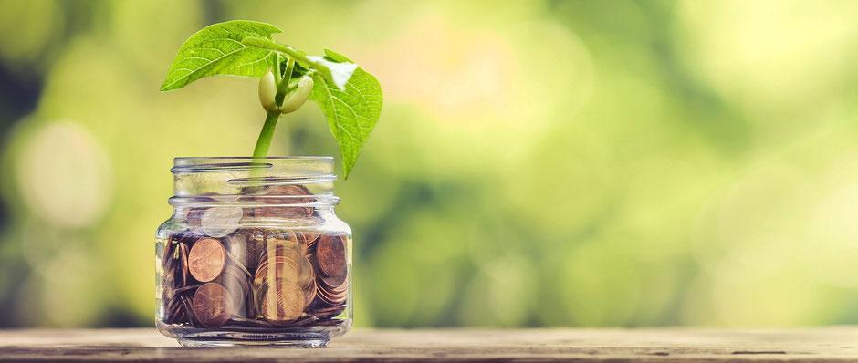 Kosten und Kostenerstattung. Auf dem Foto ist eine Pflanze in einem Glas voller Geld zu sehen.