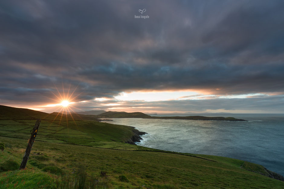 bonsai fotografie, ireland, dursey island, beara peninsula