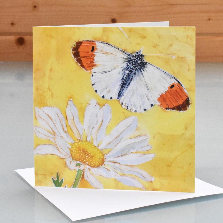 Orange Tip Butterfly & Daisy Art Card blank inside greeting card