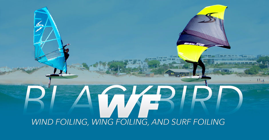 location wing foil Guadeloupe