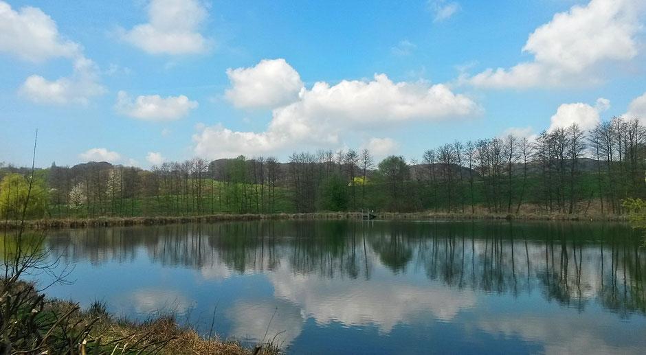 Fischteiche im Stinderbachtal spiegeln den Frühling