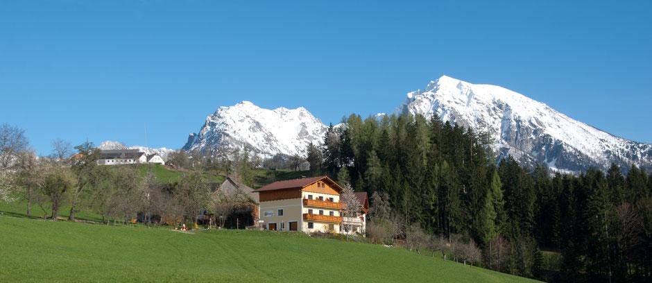 Grüblerhof in Edlbach Aussicht | Barbara Feßl